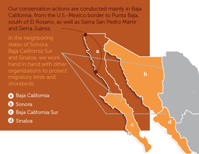 Map of Terra Peninsular's conservation actions