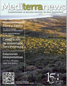 Vol. 1 Issue 2 (June 2016)