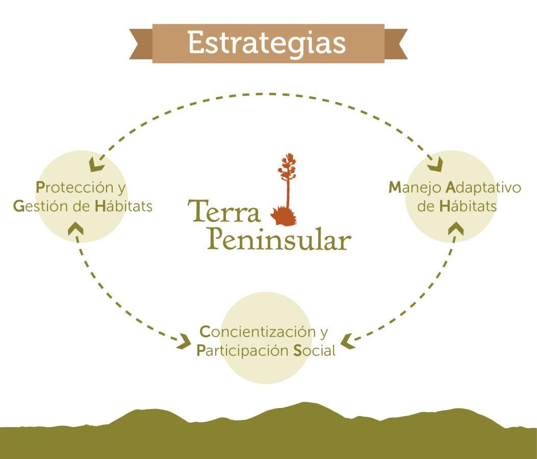 Estrategias de Terra Peninsular