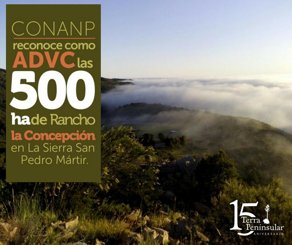 La Comisión Nacional de Áreas Naturales Protegidas (CONANP) reconoce como Área Destinada Voluntariamente a la Conservación (ADVC) las 500 hectáreas de Rancho La Concepción en la Sierra de San Pedro Mártir.