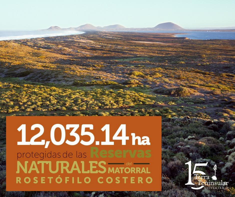Protección de 12 035.14 hectáreas de las reservas naturales del matorral rosetófilo costero.