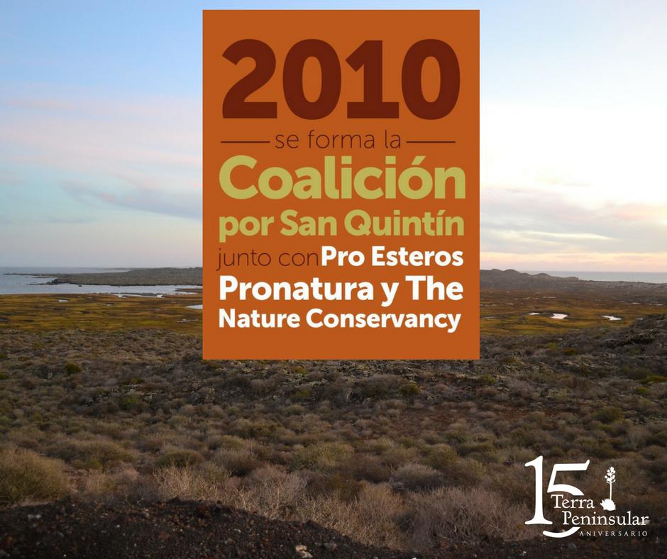 En el 2010 se forma la Coalición por San Quintín junto con ProEsteros, Pronatura y The Nature Conservancy.