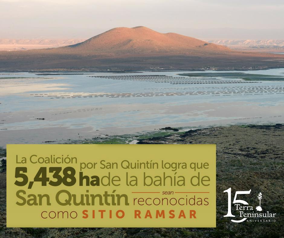 La Coalición por San Quintín logra que 5 438 hectáreas de la bahía de San Quintín sean reconocidas como Sitio Ramsar, es decir, humedal de importancia internacional.