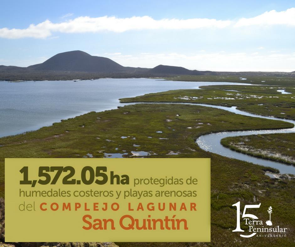 Protegidas 1 572.05 hectáreas de humedales costeros y playas arenosas del Complejo Lagunar San Quintín.