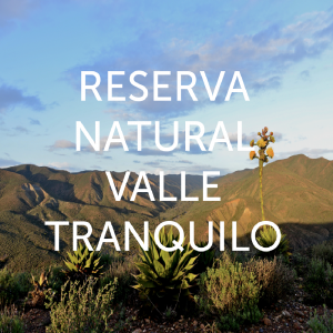 Reserva Natural Valle Tranquilo