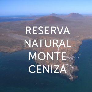 Reserva Natural Monte Ceniza