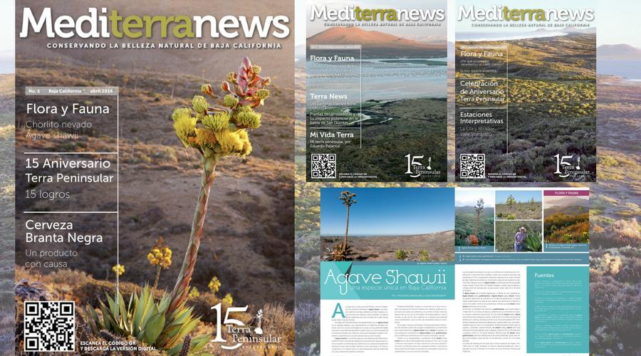 ¡Lee las Crónicas Terra semanales!