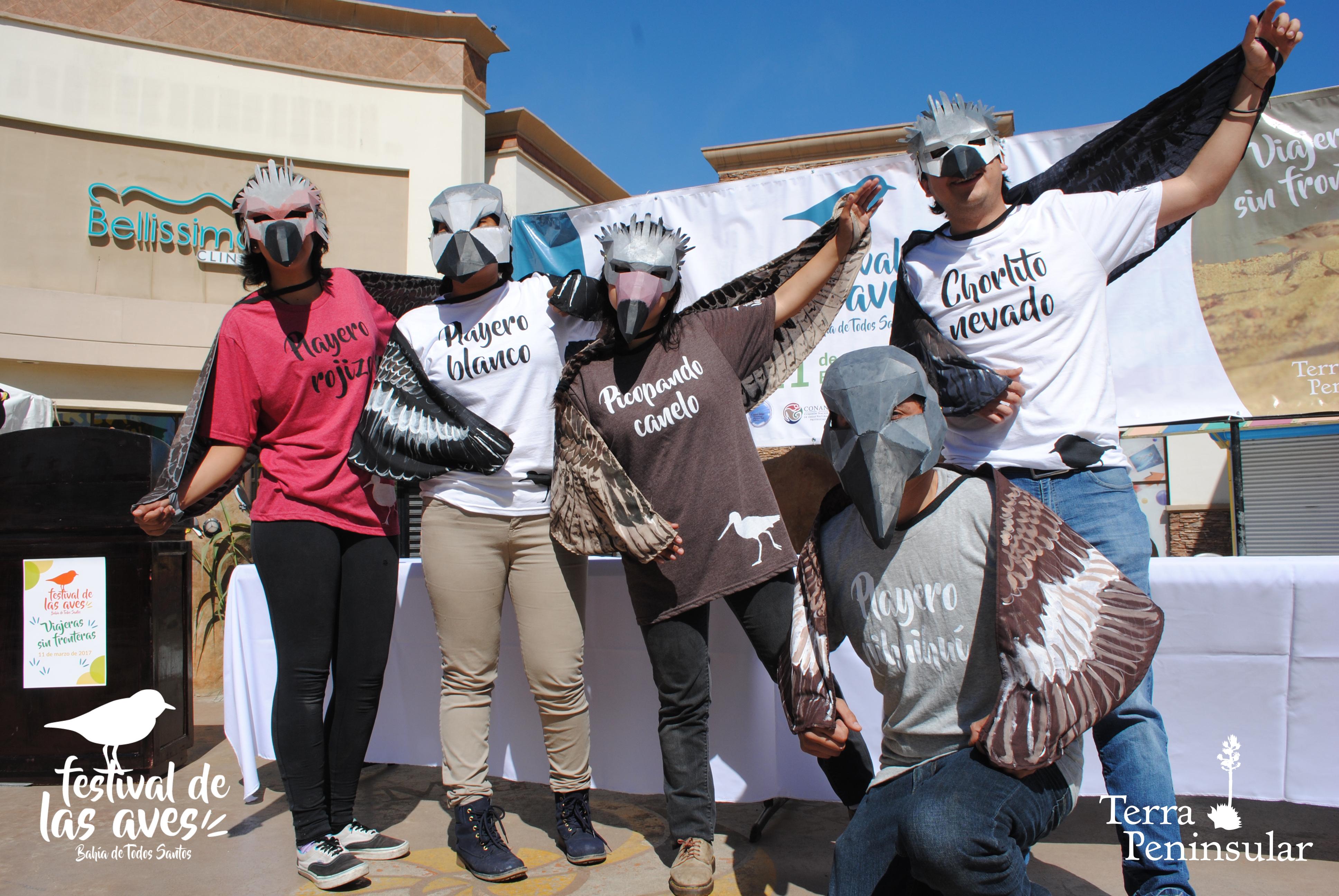 Festival de las Aves Bahía de Todos Santos en Ensenada 2017