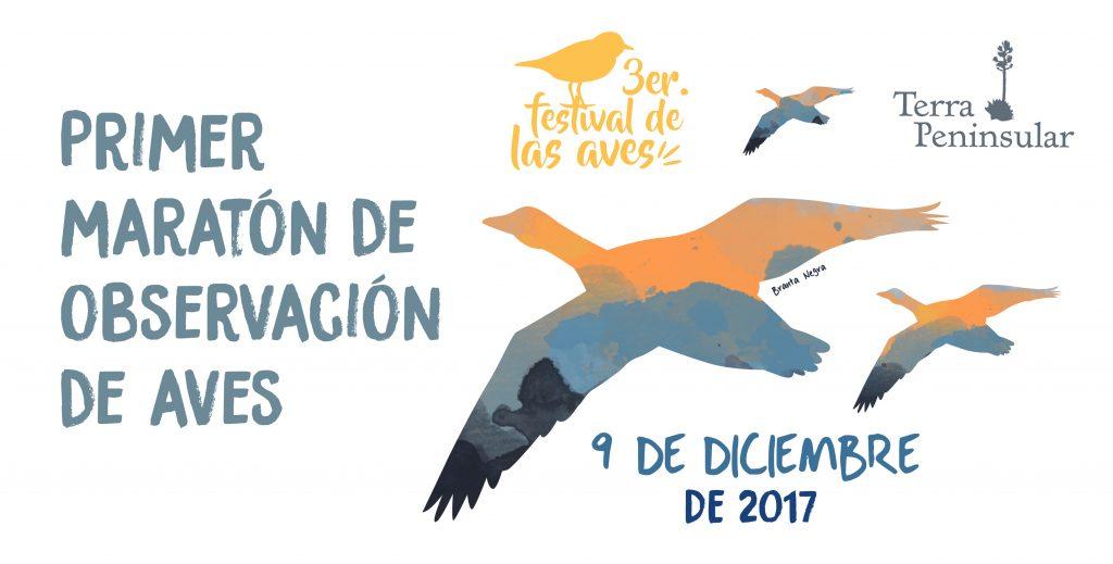 Primer maratón de observación de aves 2017