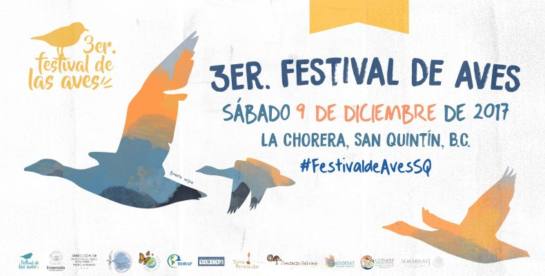 Festival de las Aves 2017