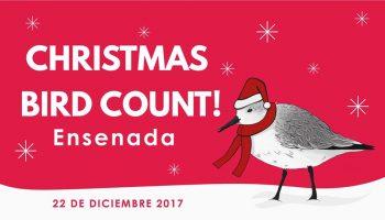 Christmas Bird Count 2017