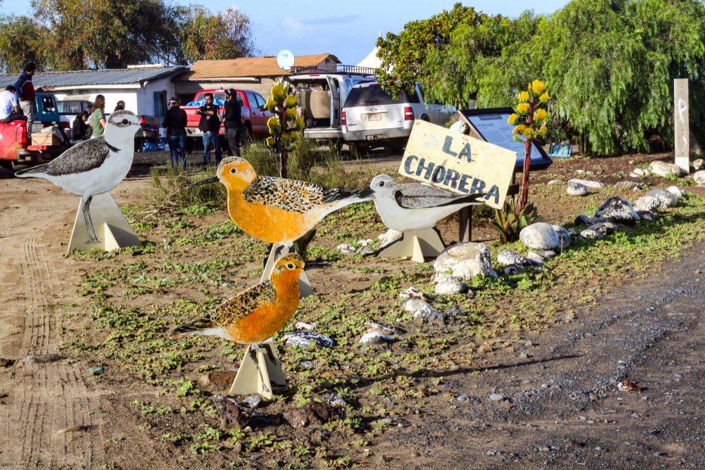 Como cada año, la comunidad La Chorera fue la sede del festival. Foto: Ana Rosa Azuela.