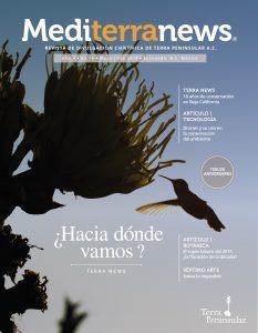 Vol. 4 Núm. 15 (Mayo 2019)