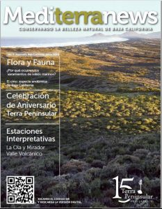 Vol. 1 Núm. 2 (Junio 2016)
