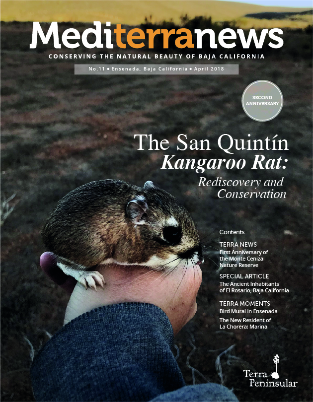 Vol. 3 Issue 11 (April 2018)