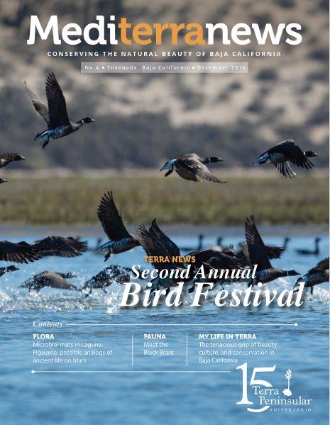 Vol. 1 Issue 4 (December 2016)