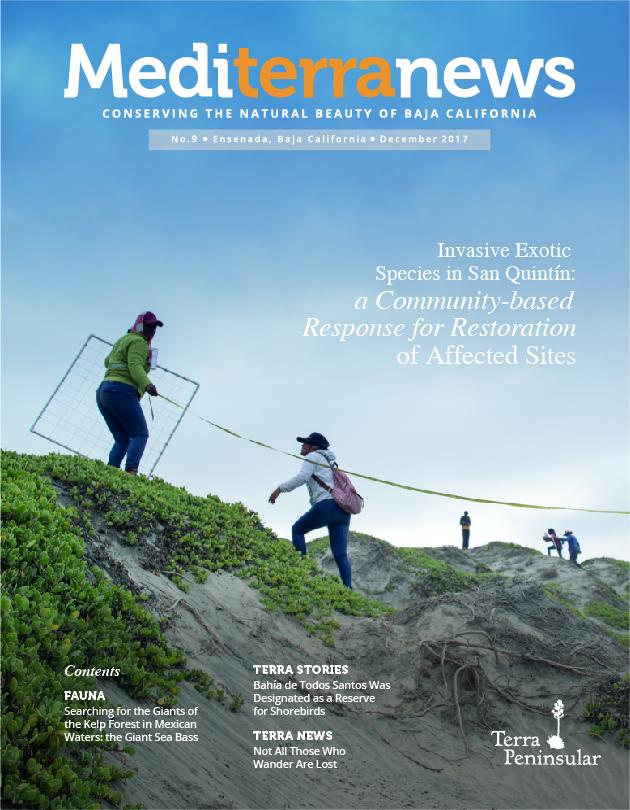 Vol. 2 Issue 9 (December 2017)