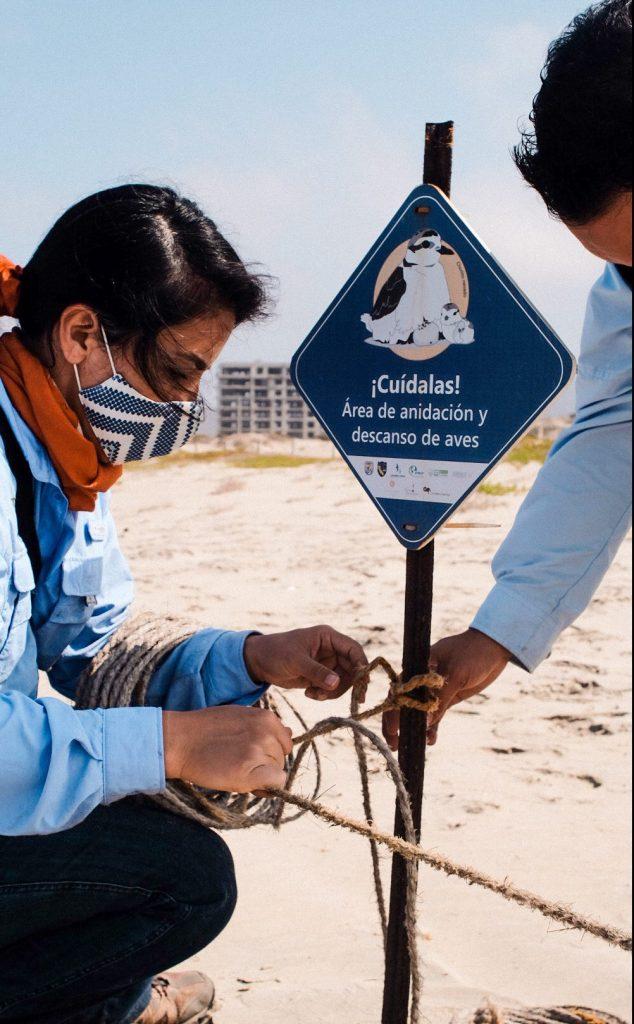 Conservación de aves